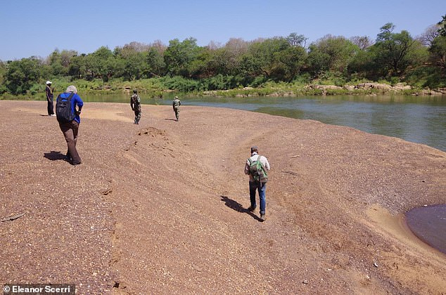Field walking team along the Gambia River, Senegal.  The team doesn't know exactly why Stone Age West Africans took longer to adopt new tools, but they speculate that it could be due to geographical isolation.