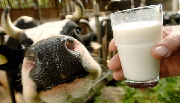 Незабаром українське молоко вийде на ринки Японії та Аргентини