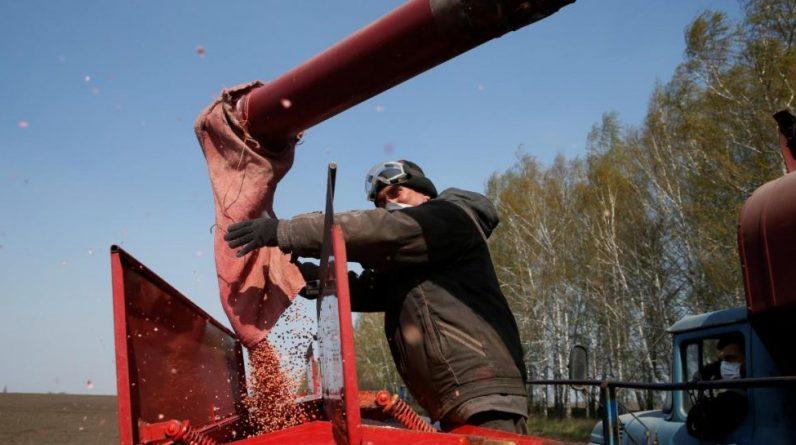 Кампанія по посіву ярих зернових в Україні майже закінчена - УНІАН