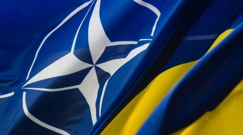 Олігархія розглядається як перешкода для вступу України до НАТО - УНІАН